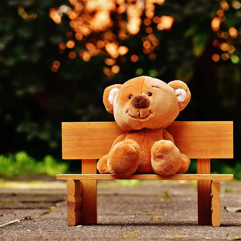 A teddy bear sat on a bench to illustrate the level of care and attention we will give to your wordpress site